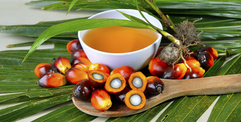 Palm oil in a bowl with fronds and fruits