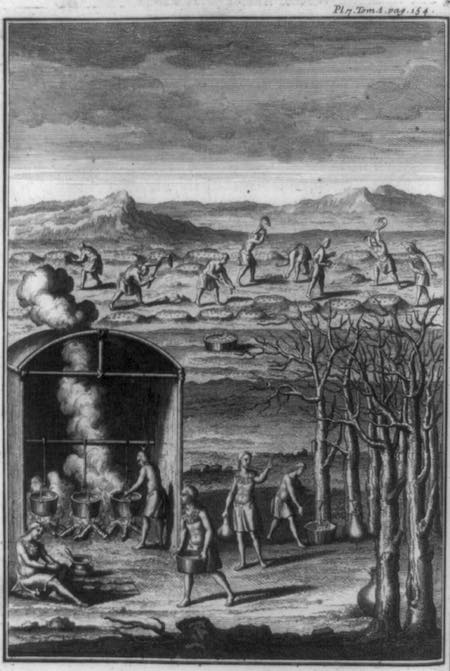 Engraving of Native Americans gathering maple syrup