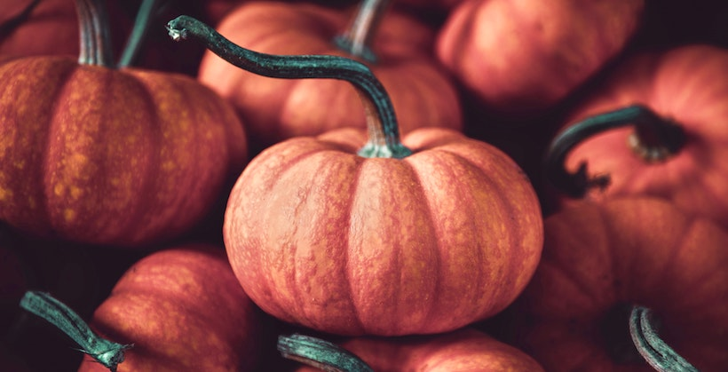 Small pumpkins in a pile