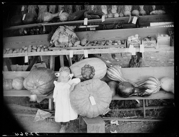 A young girl stands next to pumpkins at the Custer County Fair in Nebraska in 1886