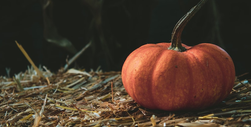 A pumpkin on top of straw
