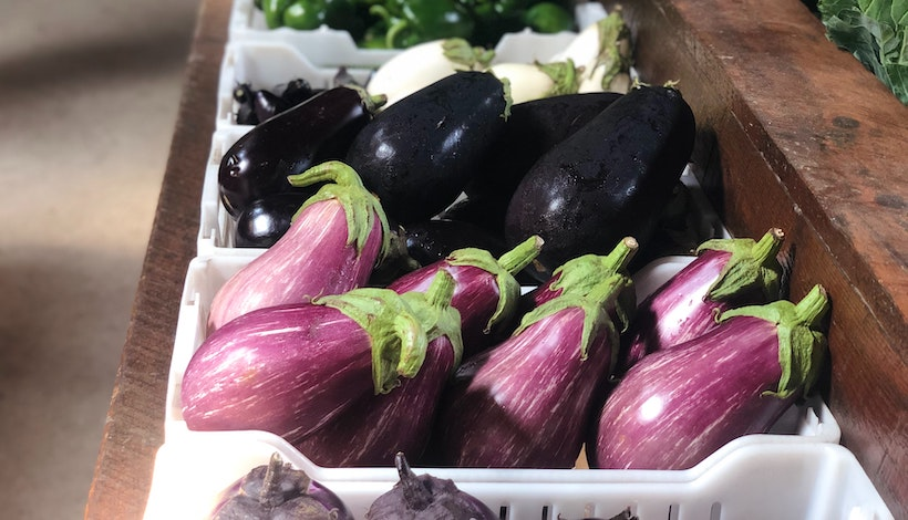 Eggplants of various colors
