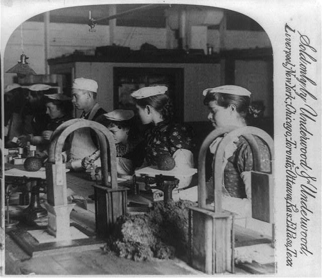 Workers in the mince meat factory